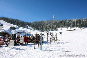 Лыжные трассы в Пампорово